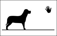 Private kurse für hunde, Monthey, Schweiz